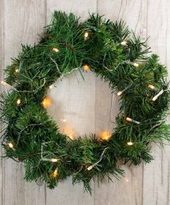 Noble Pine Wreath and Multi Lights
